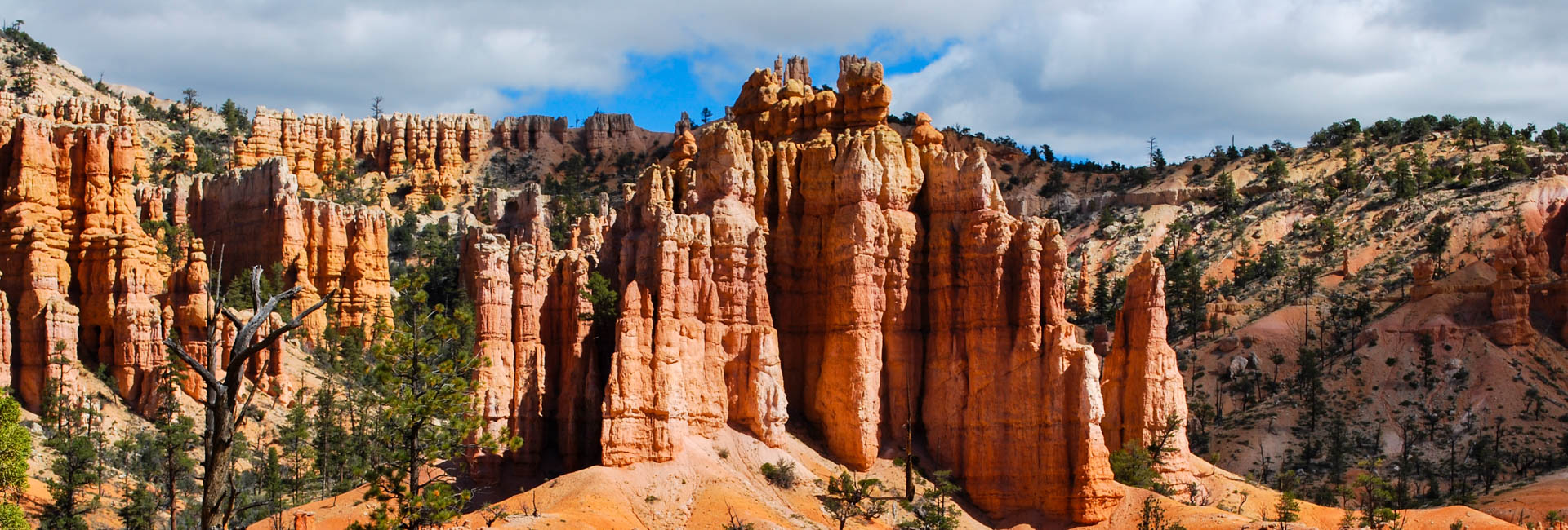 Private Guided Southern Utah Highlights Tour