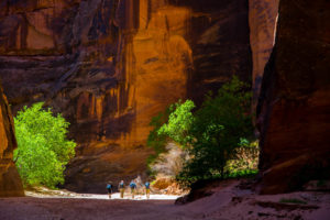 Buckskin Gulch Afternoon Small-1